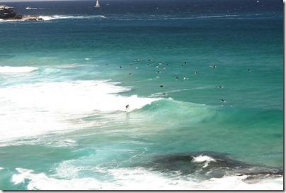 les surfeurs de Bondi