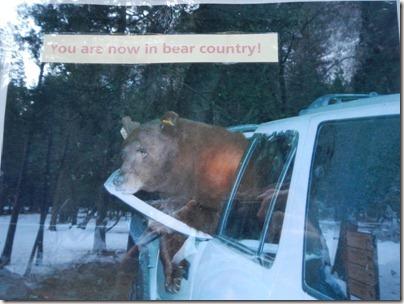 Yosemite Park - Ca fait peur...